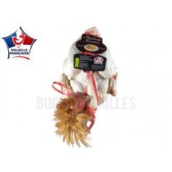 Poularde fermière de l'Ain 2.5~3kg