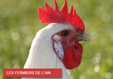 Les fermiers de l'Ain